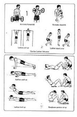 Contoh Latihan Kekuatan Otot Lengan : contoh, latihan, kekuatan, lengan, Muk343:, Komponen, Fisik