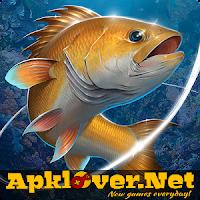 Fishing Hook MOD APK unlimited money