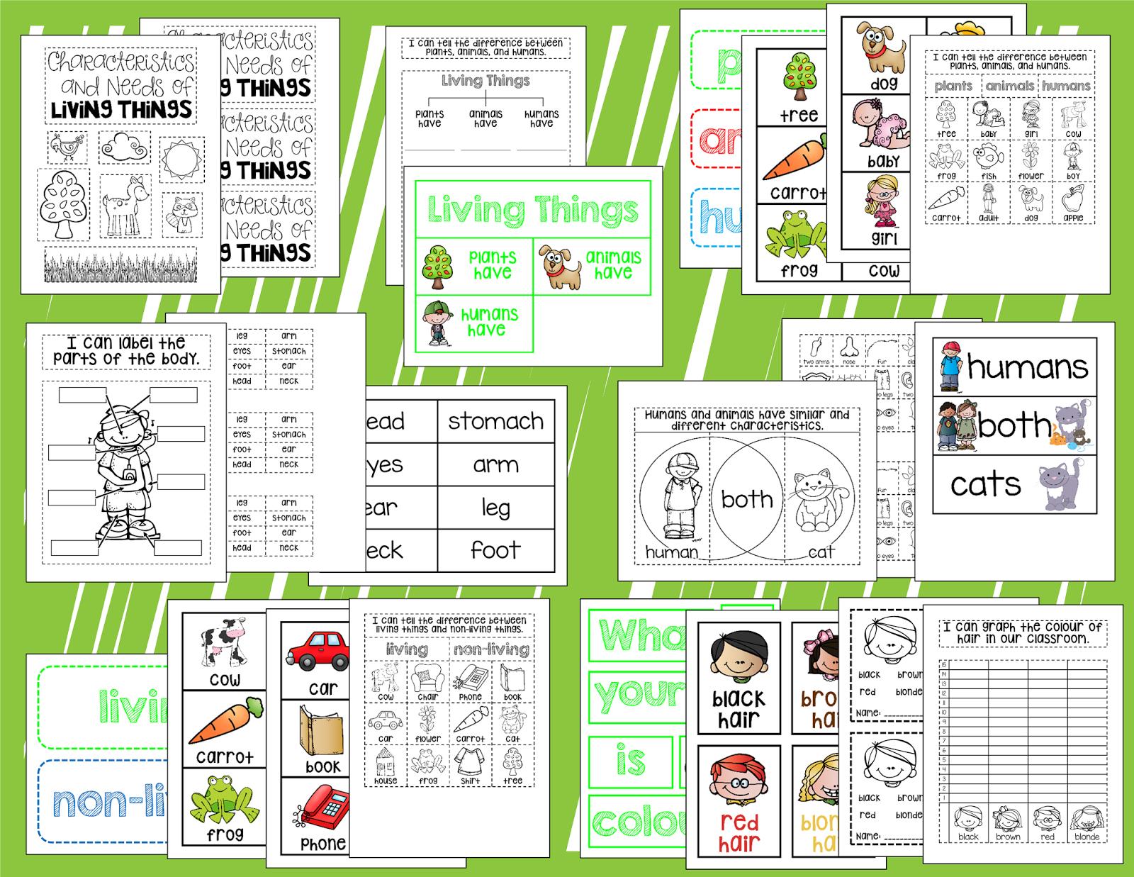 First Grade Garden Interactive Science Journals