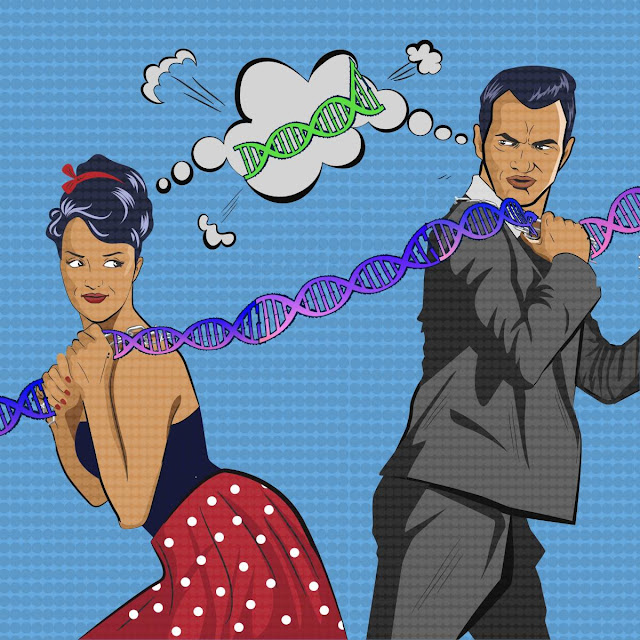 Researchers identify 6,500 genes that are expressed differently in men and women
