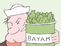 BAYAM vs Penuaan Dini dan Kanker Menurut Prof. DR. IR Made Astawan