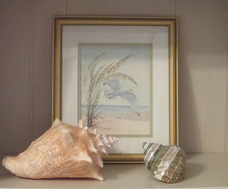 seagull print on shelf with shells