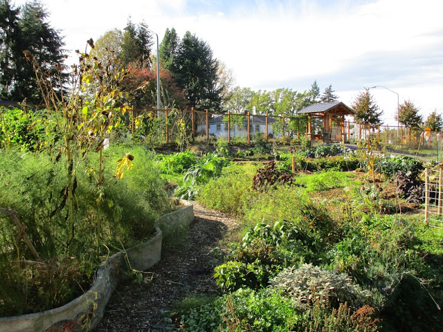 Chuckanut Center Gardens Bellingham WA