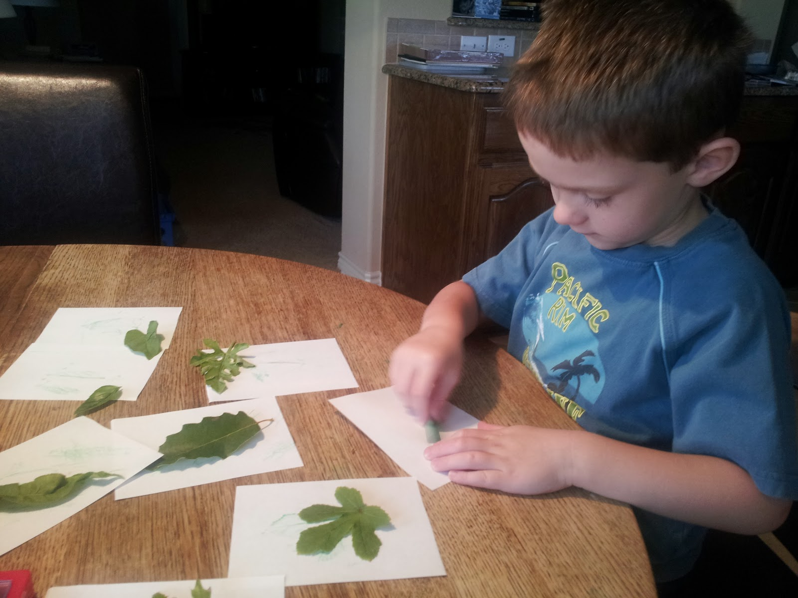 My Fruitful Life Leaf Activities For Preschoolers And