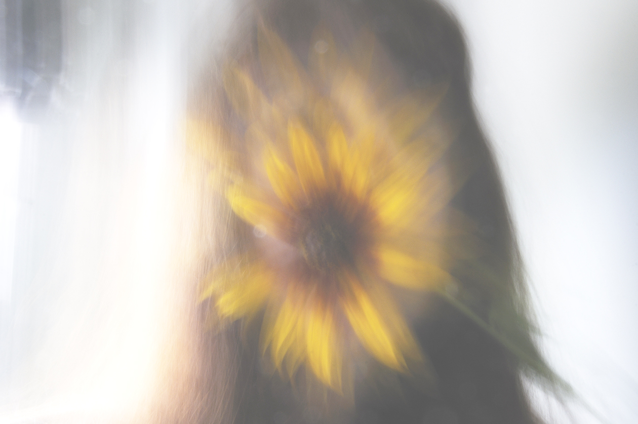 Photographs From A White Space Meditation On What A Flower Is