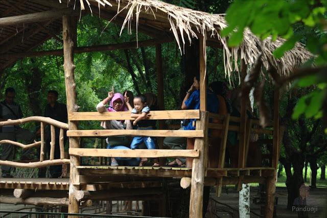 Berteduh di Kesambi Trees Park
