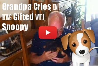 Watch Grandpa cry who just lost his wife and had to spent his remaining life all alone fall to teary eyes on being gifted with a cute Puppy Snoopy via geniushowto.blogspot.com videos