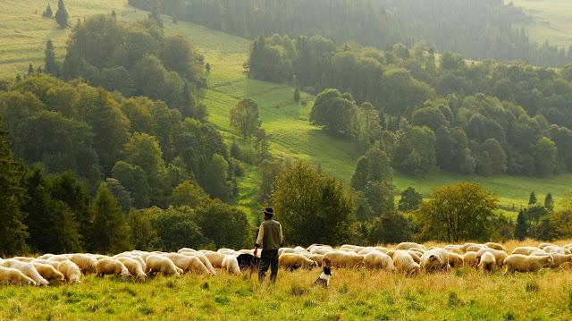 ventaja de Irlanda, naturaleza