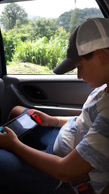 Reisebegleitung: Nintendo Switch unterwegs spielen