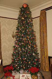 Historic Governors' Mansion Tree