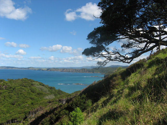New Zealand's Bay of Islands