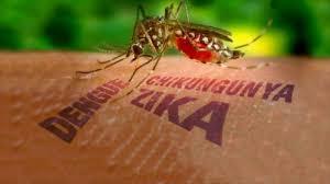 Apa Bahaya Virus Zika