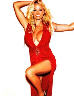 Pamela Anderson Hot Legs
