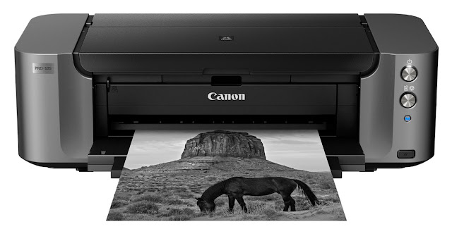 Canon Pixma PRO-10S Best a3+ photo printer of 2017