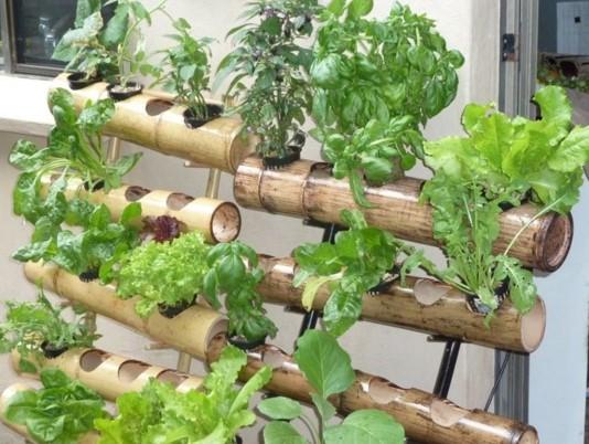 hidroponik sayuran sistem NFT