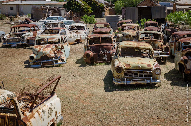 Very strange yard filled with dozens of old rusty cars