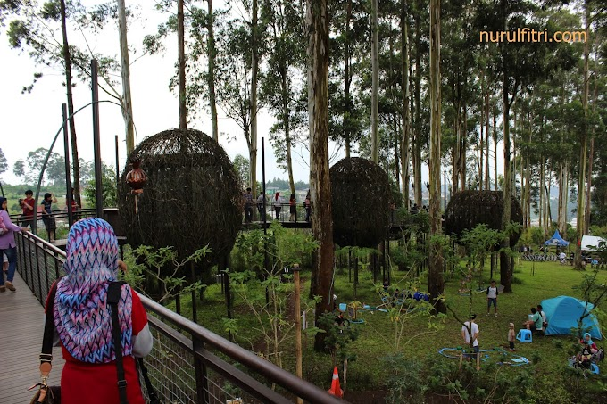 Menikmati Kuliner di atas pohon ala Dusun Bambu