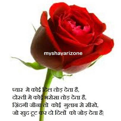 Rose Day Shayari Image for Girlfriend in Hindi Whatsapp Status Download