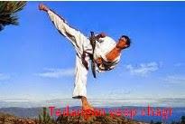 5 Jenis Teknik Dasar Taekwondo Beserta Gambar dan Video zonapelatih.net