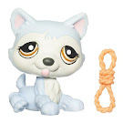 Littlest Pet Shop Singles Husky (#1046) Pet