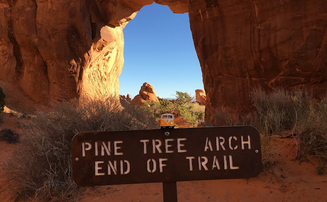 Pine Tree Arch Trail