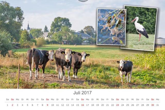 Kalenderbild Juli 2017