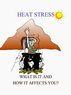Presentation About Heat Stress