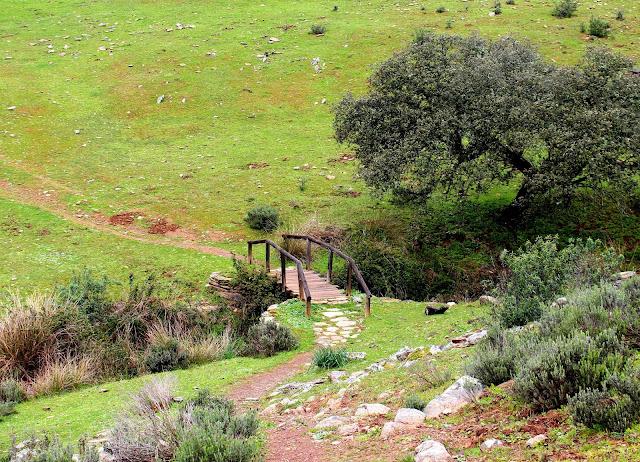 Paisajes bucólicos del Parque Nacional de Monfragüe. Cáceres