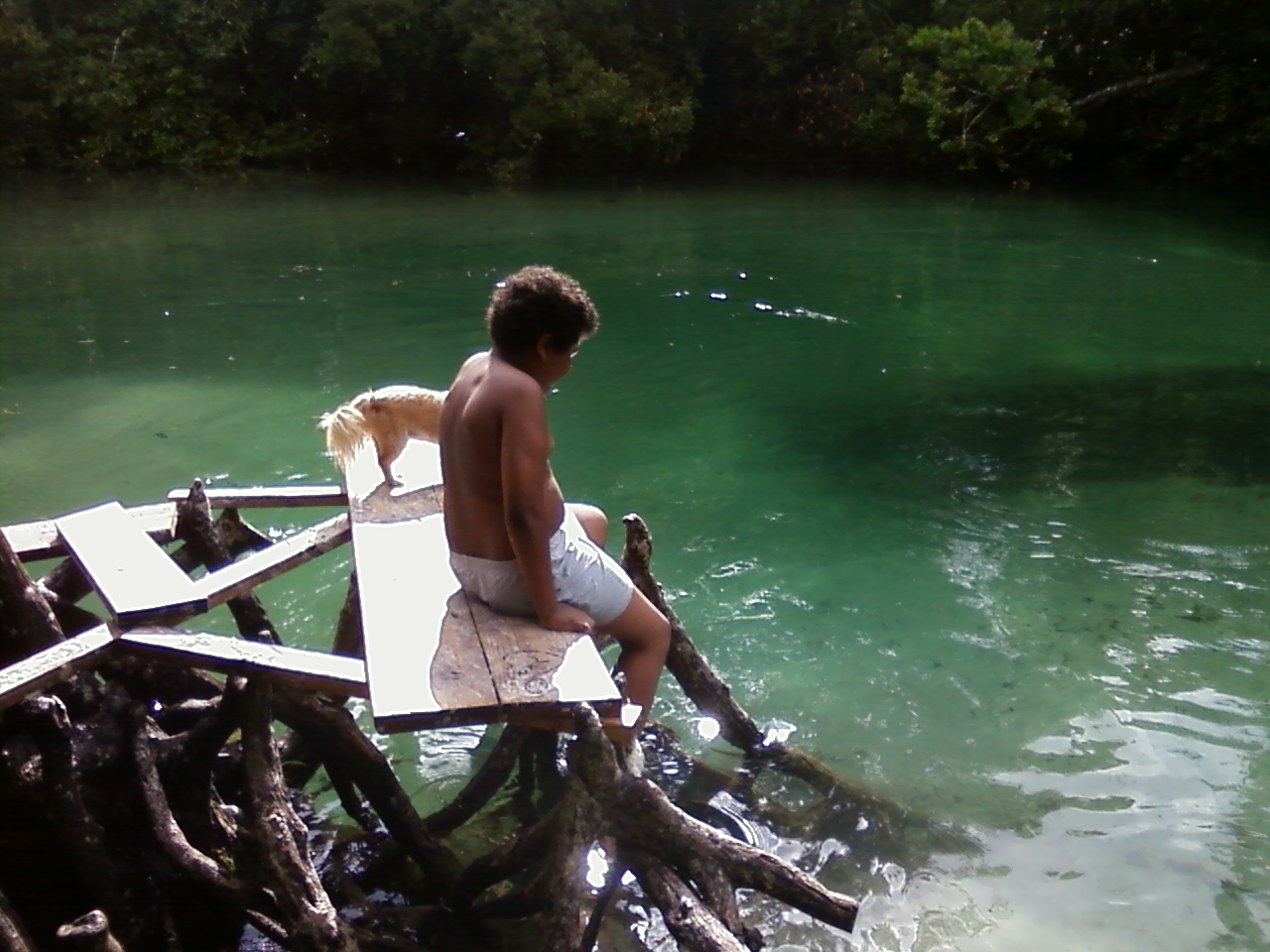 Jonny trying to decide whether he should swim in the Manatee water or not