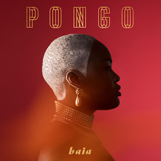 Pongo - Baia