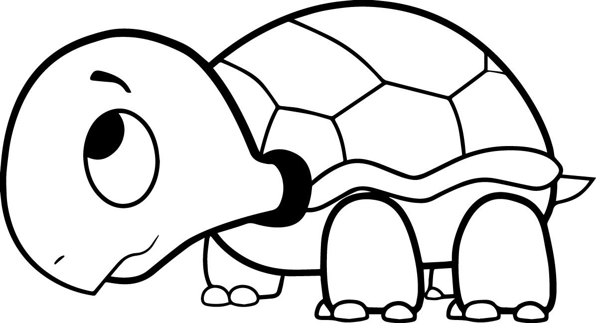 riscos graciosos  cute drawings   riscos de tartarugas  turtles