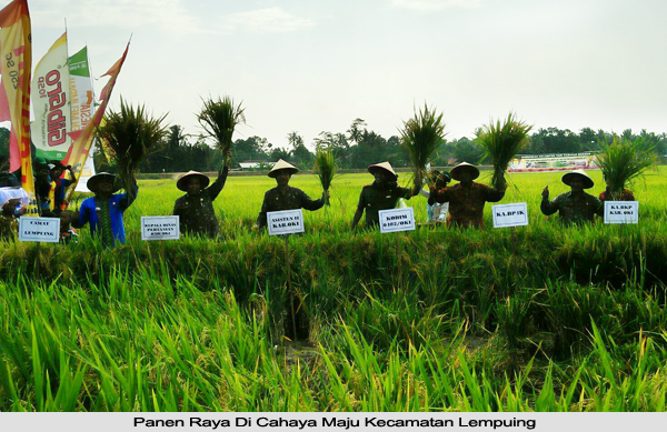 Panen Raya di OKI, Dukung Kedaulatan Pangan Nasional