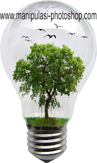 Manipulasi Foto Pohon Mini