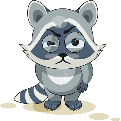 Annoyed Raccoon