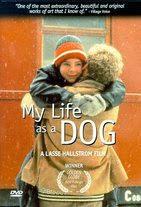 Watch Mitt liv som hund Online Free in HD