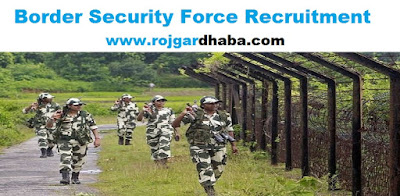 http://www.rojgardhaba.com/2017/06/bsf-border-security-force-jobs.html