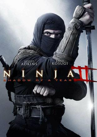 Ninja: Shadow of A Tear 2013 BRRip 720p Dual Audio In Hindi English ESub