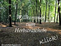https://v-vabelhaft.blogspot.de/2016/10/herbstrascheln-55_30.html