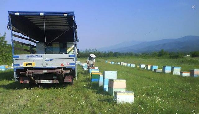 Μελισσοκομικό αυτοκίνητο: Όλη η νομοθεσία