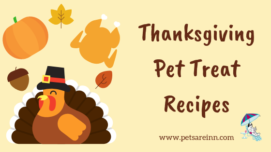 Thanksgiving Pet Recipe
