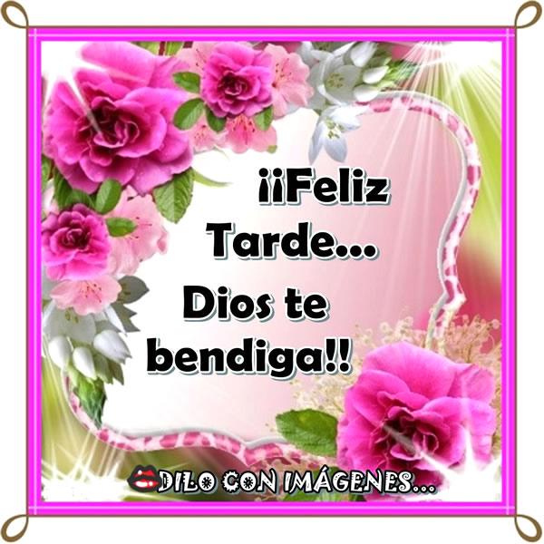 Feliz Tarde dios te bendiga