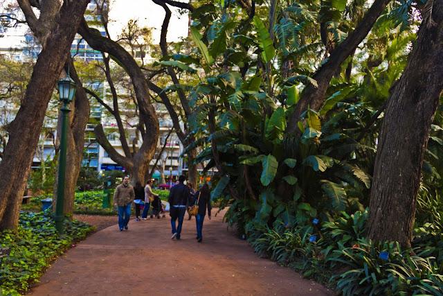 Paseo en él Botánico