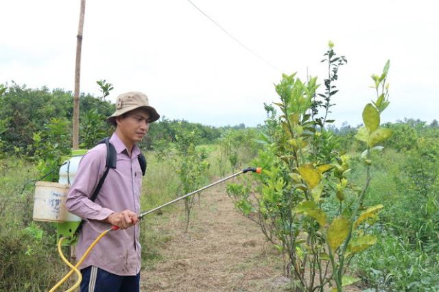 Ông Nguyễn Văn Lịnh, phó chủ tịch Ủy ban MTTQ xã Tân Thành, xin nghỉ việc về làm vườn - Ảnh: Lê Dân