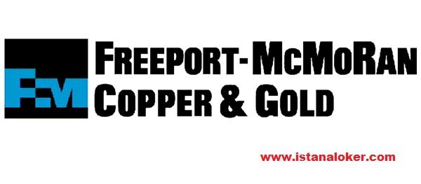 Lowongan Kerja Terbaru PT Freeport Indonesia 8 Posisi