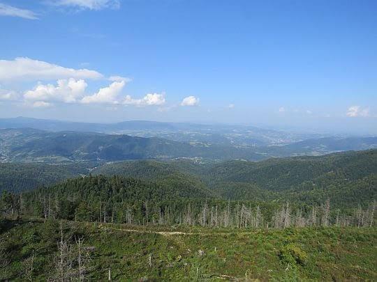 Panorama w stronę Beskidu Wyspowego.