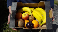 A standard fruit box with banana, apple, orange, plum, clementine and kiwi