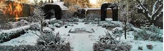 graidina iarna, decor iarna in gradina, zapada pe plante, curte iarna, amenajare de iarna