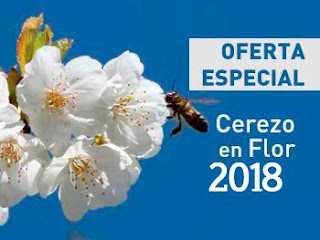 OFERTA Cerezo en Flor 2018. Valle del Jerte