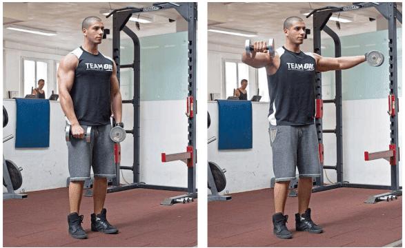 musculation Développé assis avec haltères