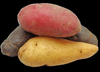 potato-patates